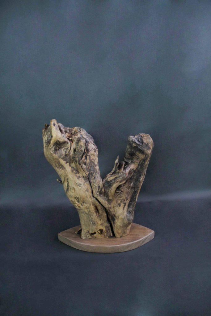 bois et nature création design Sbands Grenoble «Fragment de Vie»